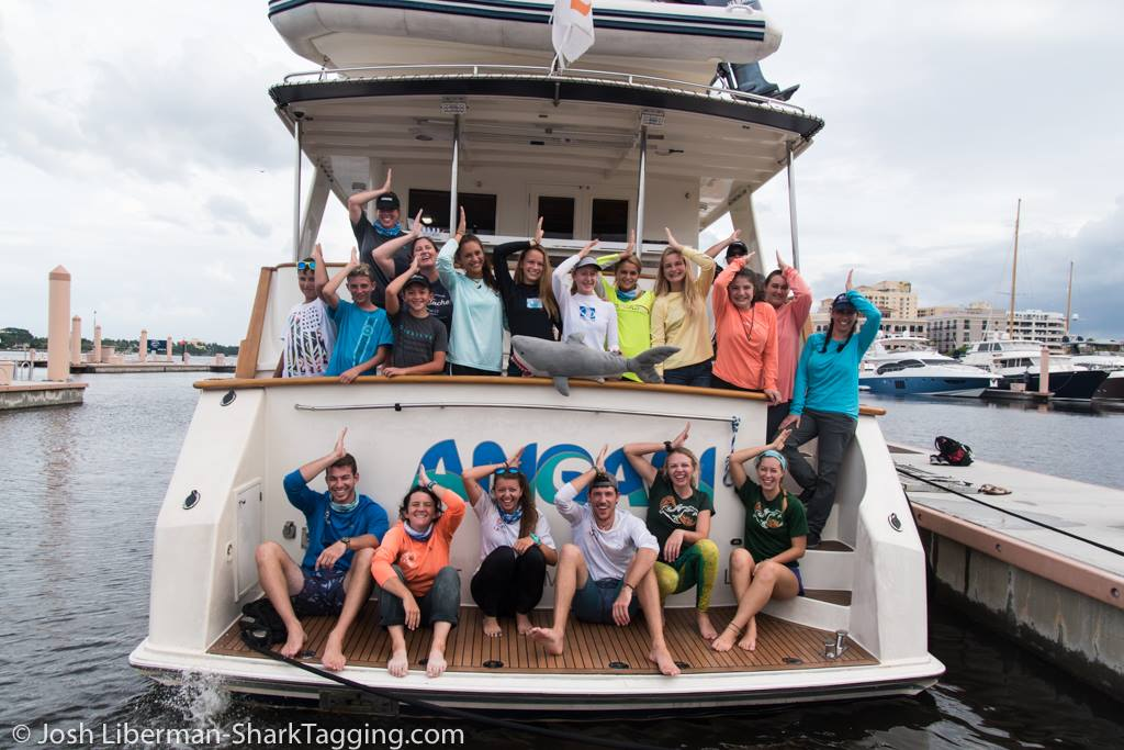 Successful Weekend Of Shark Tagging With University Of Miami Scientists And South Florida Youth