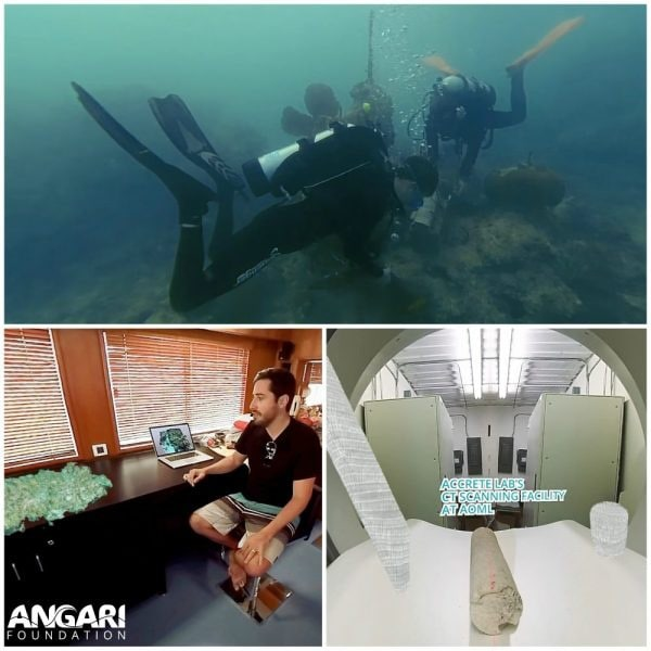 ANGARI Foundation To Premiere Its First Generation Ocean 360/VR Film At NOAA Open House