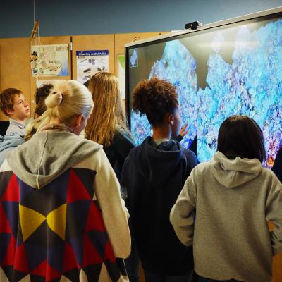 Generation Ocean: Coral Reefs smartboard activity