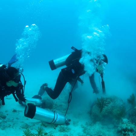 Generation Ocean: Coral Reefs