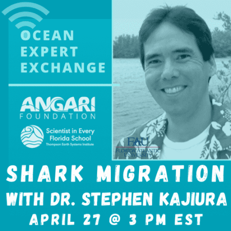 Ocean Expert Exchange: Shark Migration