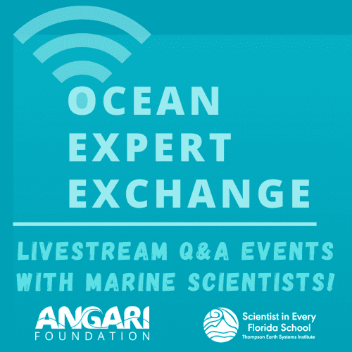 Ocean Expert Exchange With SEFS