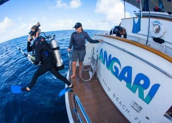 SCUBA diving from the research vessel ANGARI
