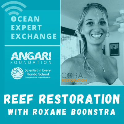 OEE coral restoration with Roxane Boonstra of Coral Restoration Foundation