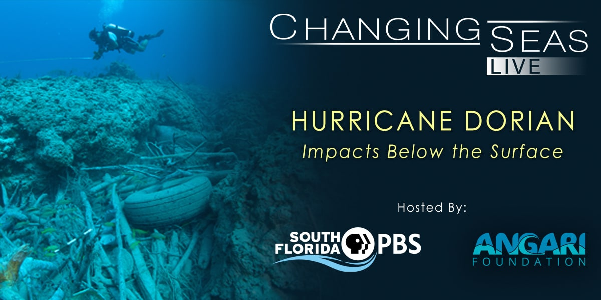 Join Us For A Live Discussion About Hurricane Dorian's Impacts On The Marine Environment In The Bahamas