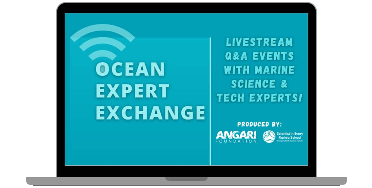ANGARI Foundation Kicks Off Fall Ocean Expert Exchange Events
