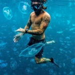 Free diver with Moon Jellyfish