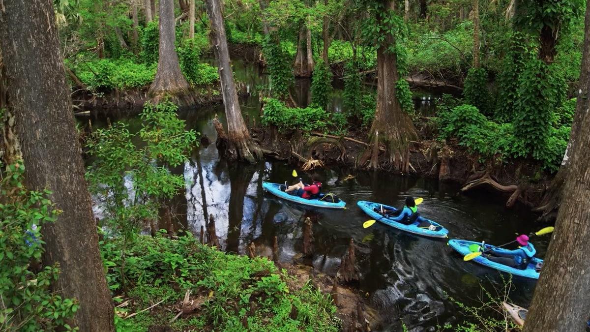 South Florida 'Hidden Wild' Film Released