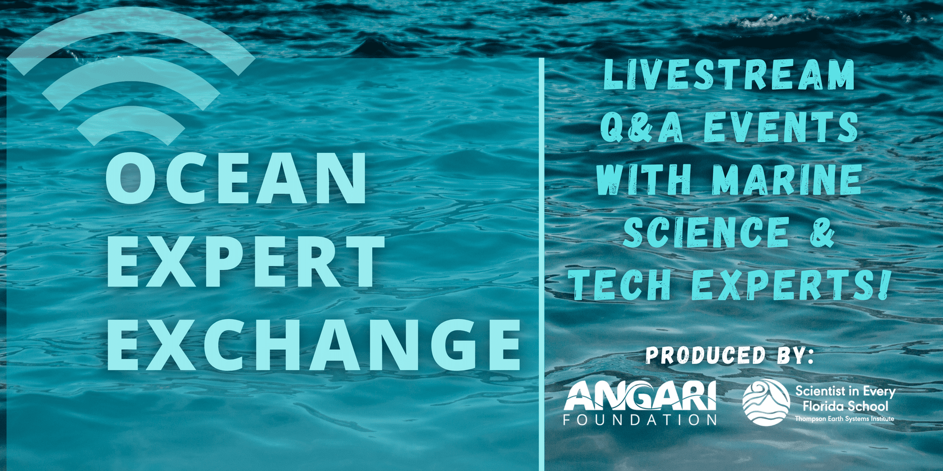 Ocean Expert Exchange Will Cover Sharks, Shipwrecks And Invasive Species Like Lionfish