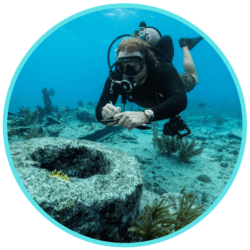 marine archaeology and shipwrecks ocean expert exchange free webinar