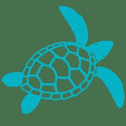 ANGARI Light Blue Sea Turtle