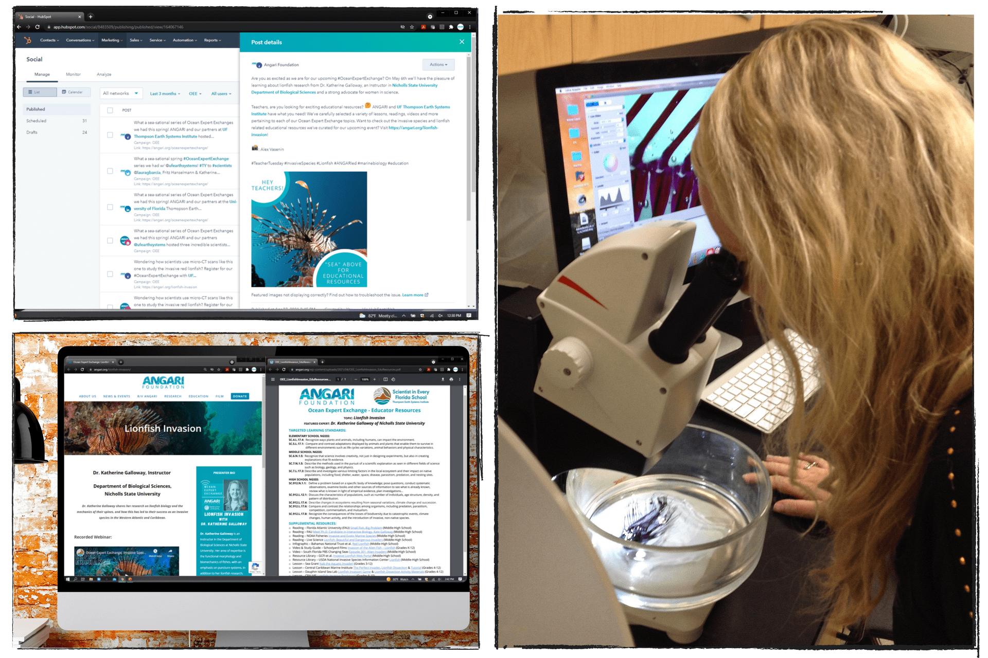 ANGARI Intern Blog - Ocean Expert Exchange: Lionfish Invasion
