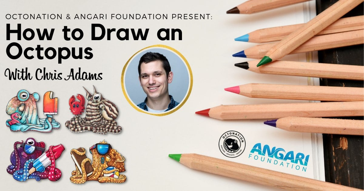 How to Draw an Octopus Event with OctoNation