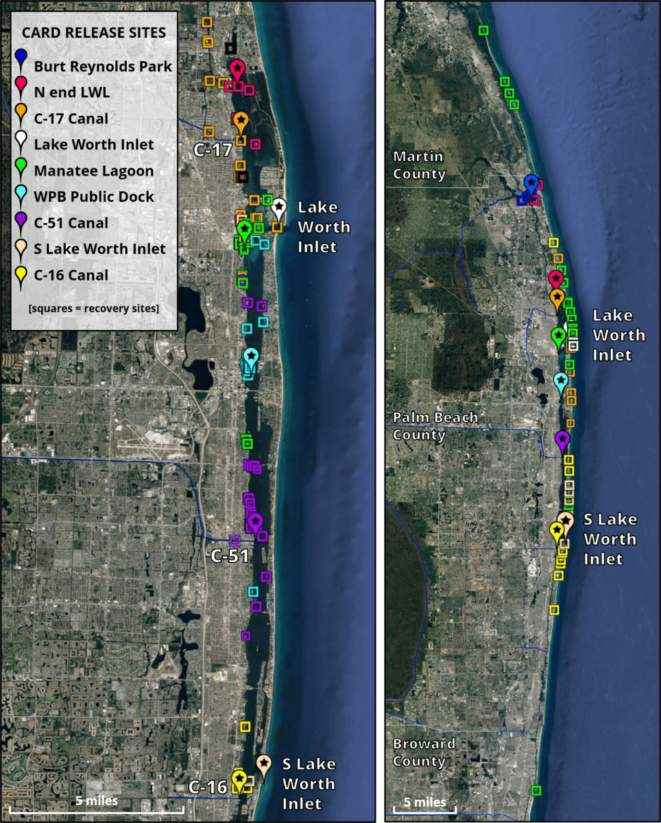 Lagoon Drift plot 2021