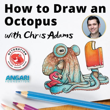 How To Draw An Octopus With OctoNation